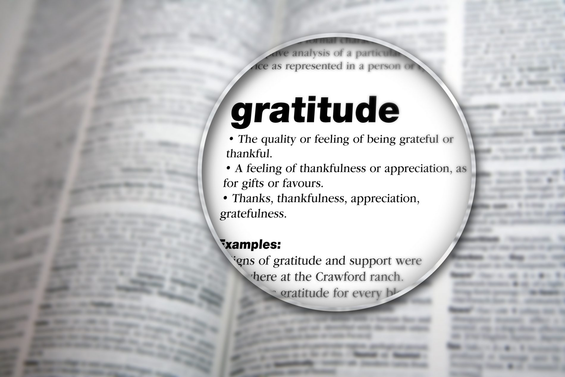 Gratitude and a Different Thanksgiving